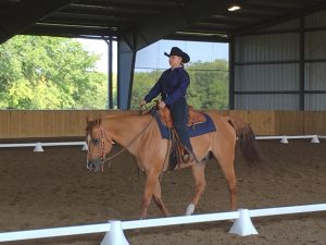 pauladressage16